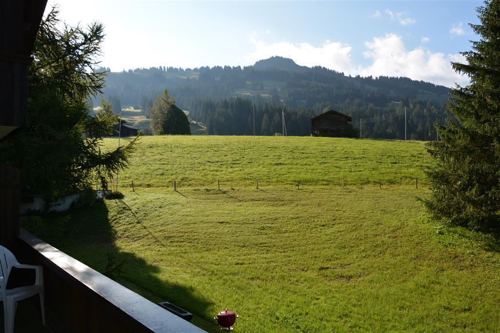 Ferienwohnung Riedbode 8-Bettwohnung (592230), Schönried, Gstaad - Saanen, Berner Oberland, Schweiz, Bild 4