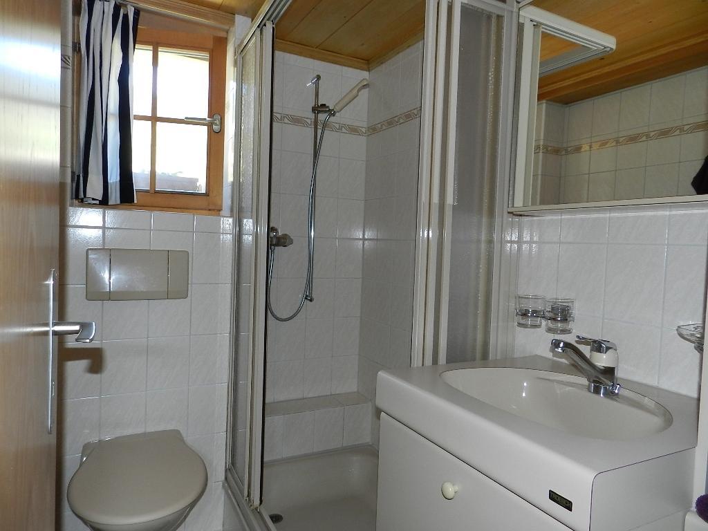 Appartement de vacances Bijou Arnensee 2-Bettwohnung (983994), Feutersoey, Gstaad - Saanen, Oberland bernois, Suisse, image 13