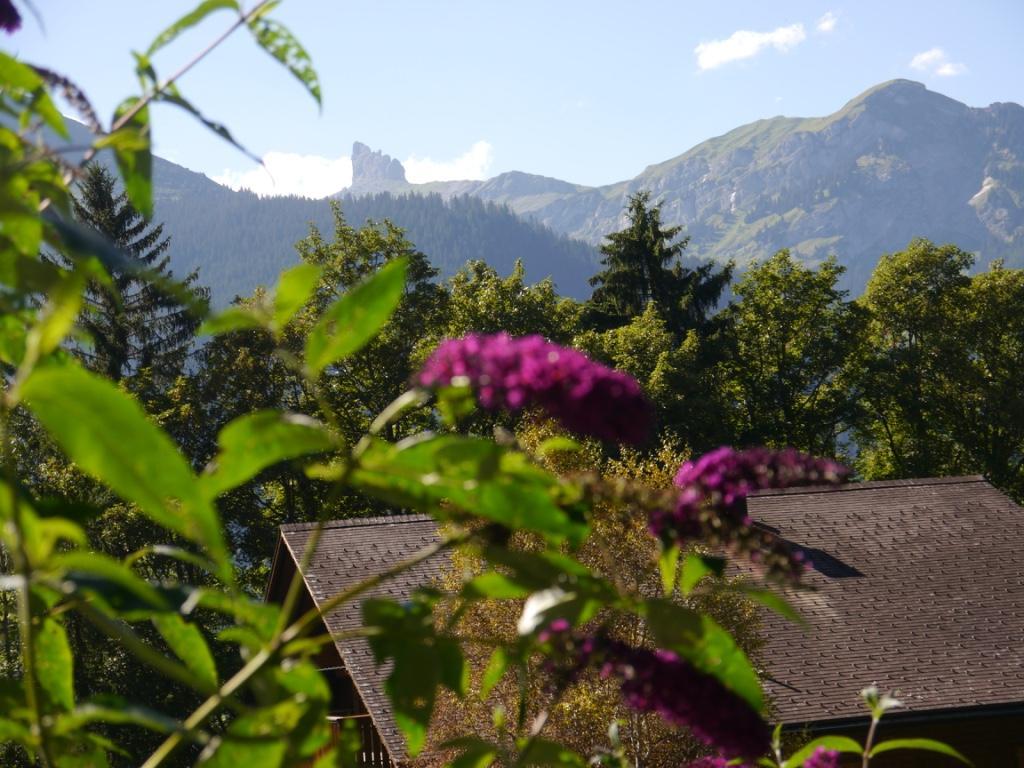 Ferienwohnung Birkli 2 2 Bett Wohnung Obj. W2002 (2575325), Wengen, Jungfrauregion, Berner Oberland, Schweiz, Bild 7