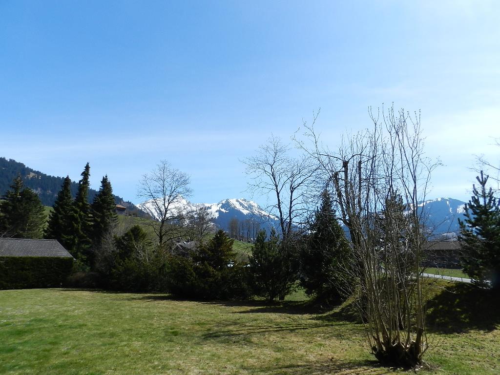Ferienwohnung Studio Charly 2-Bettwohnung (2186539), Saanen, Gstaad - Saanen, Berner Oberland, Schweiz, Bild 7