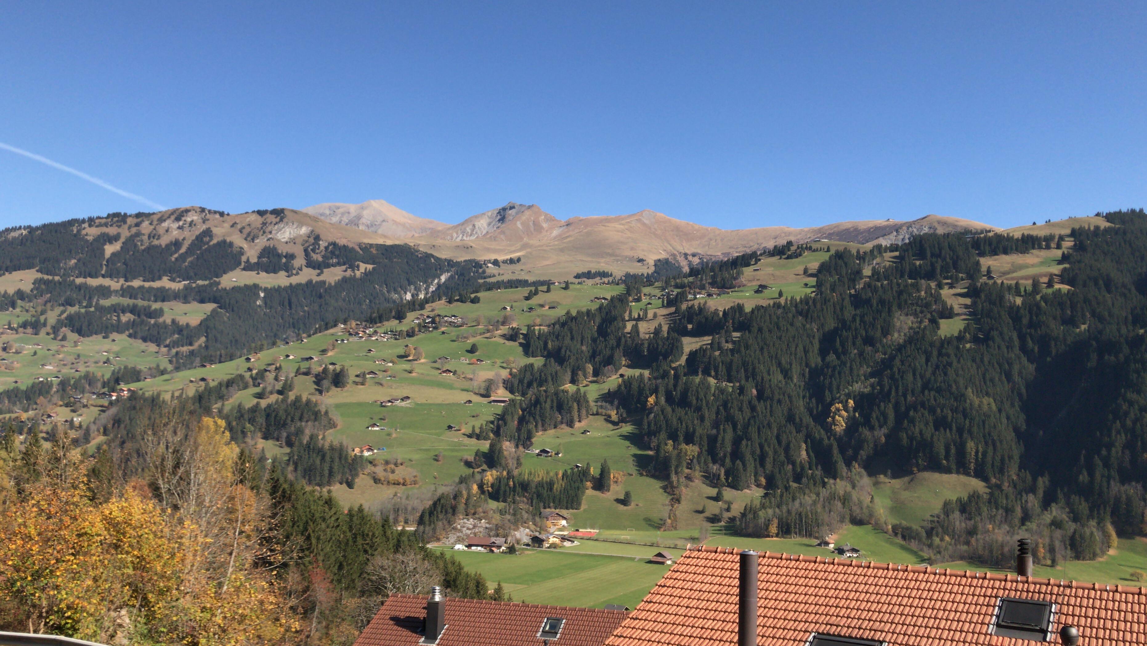 Ferienwohnung Blattistrasse 7 - EG 6-Bettwohnung (2646242), Lenk im Simmental, Simmental, Berner Oberland, Schweiz, Bild 5