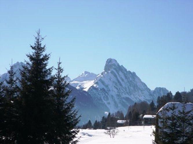 Ferienwohnung Fichte 2-Bettwohnung (591708), Saanenmöser, Gstaad - Saanen, Berner Oberland, Schweiz, Bild 9