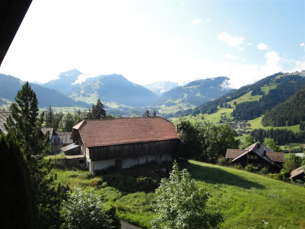 Ferienwohnung Yvonne 5-Bettwohnung (592220), Saanen, Gstaad - Saanen, Berner Oberland, Schweiz, Bild 8