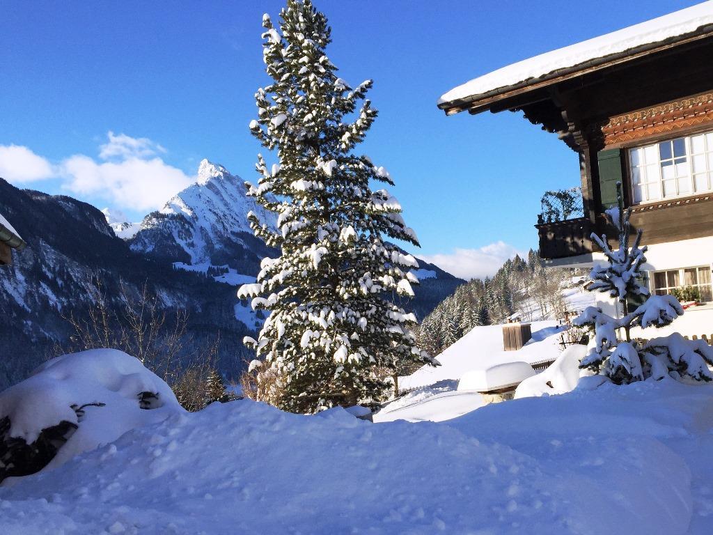 Ferienwohnung Yvonne 5-Bettwohnung (592220), Saanen, Gstaad - Saanen, Berner Oberland, Schweiz, Bild 3