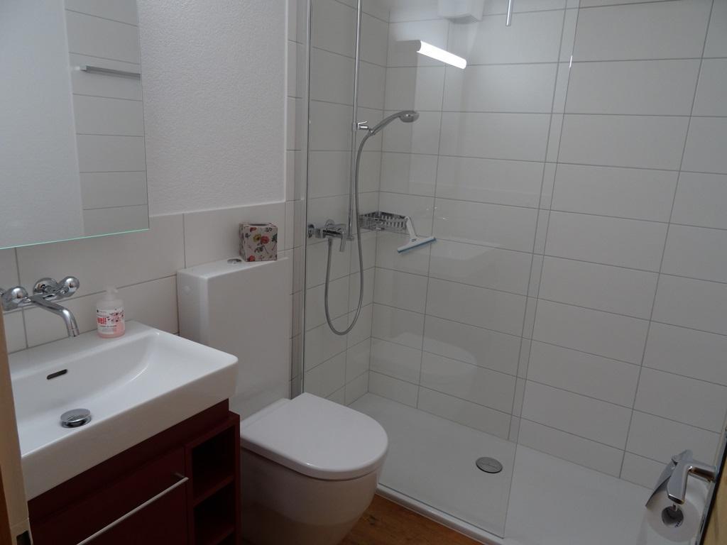 Appartement de vacances Elena # 1 2-Bett-Wohnung (2017907), Lenk im Simmental, Vallée de la Simme, Oberland bernois, Suisse, image 10
