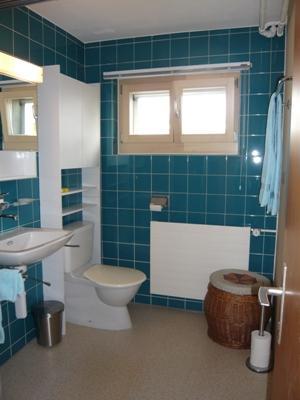 Appartement de vacances Aebnetbode 2-Bettwohnung (590777), Gstaad, Gstaad - Saanen, Oberland bernois, Suisse, image 10