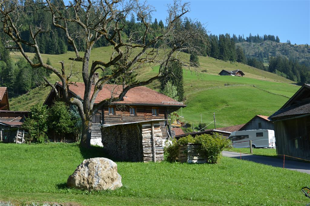 Ferienwohnung Haldi 3-Bettwohnung (591728), Zweisimmen, Simmental, Berner Oberland, Schweiz, Bild 9