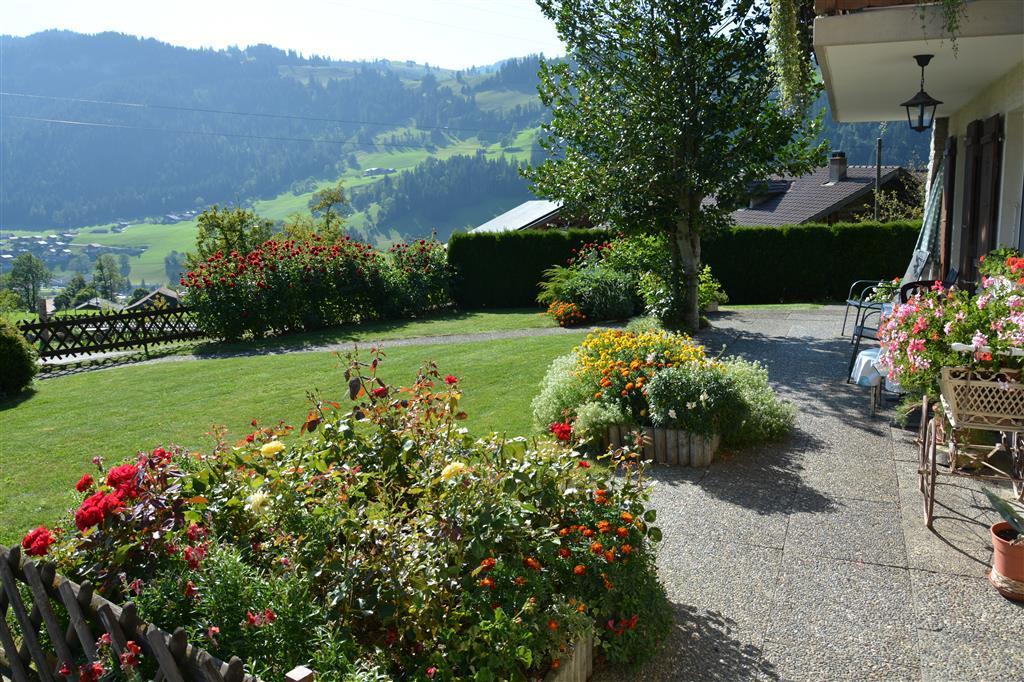 Ferienwohnung Haldi 3-Bettwohnung (591728), Zweisimmen, Simmental, Berner Oberland, Schweiz, Bild 5