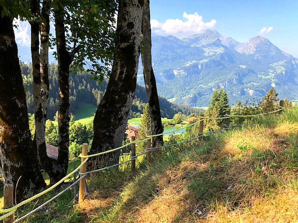Ferienwohnung Chalet Gibu 6-Bettwohnung (2509142), Hasliberg Wasserwendi, Meiringen - Hasliberg, Berner Oberland, Schweiz, Bild 4