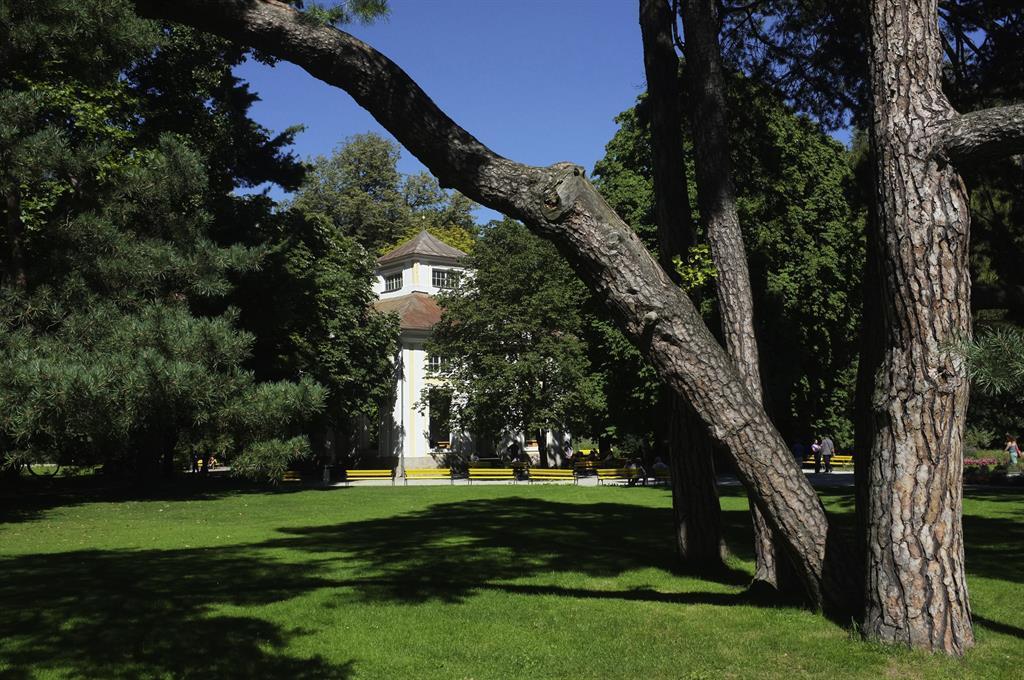 Qigong im Hofgarten