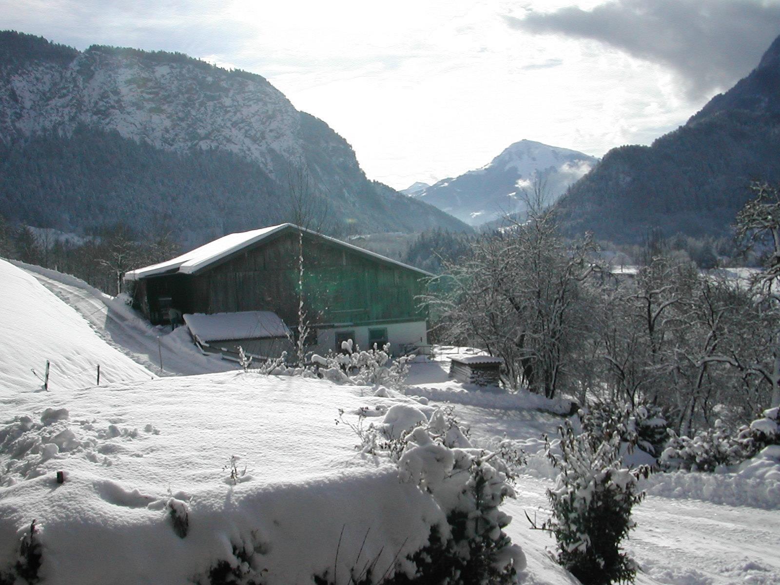 Appartement de vacances Hattenhof Ferienwohnung Panoramablick 4**** (1731454), Schwoich, Kufstein, Tyrol, Autriche, image 43
