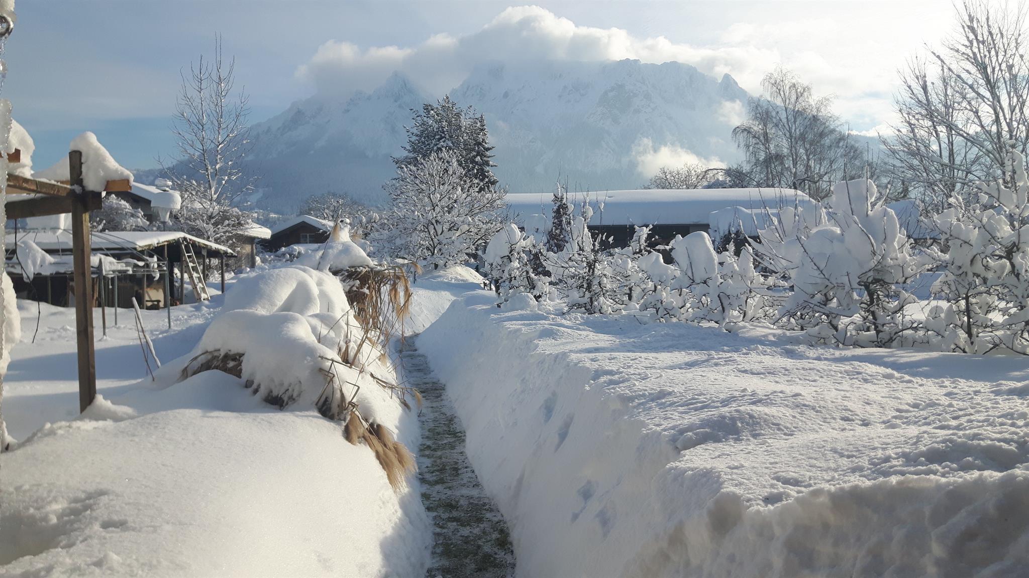 Ferienwohnung Landhaus Kitzbichler Ferienwohnung 3 (550474), Niederndorf, Kufstein, Tirol, Österreich, Bild 31