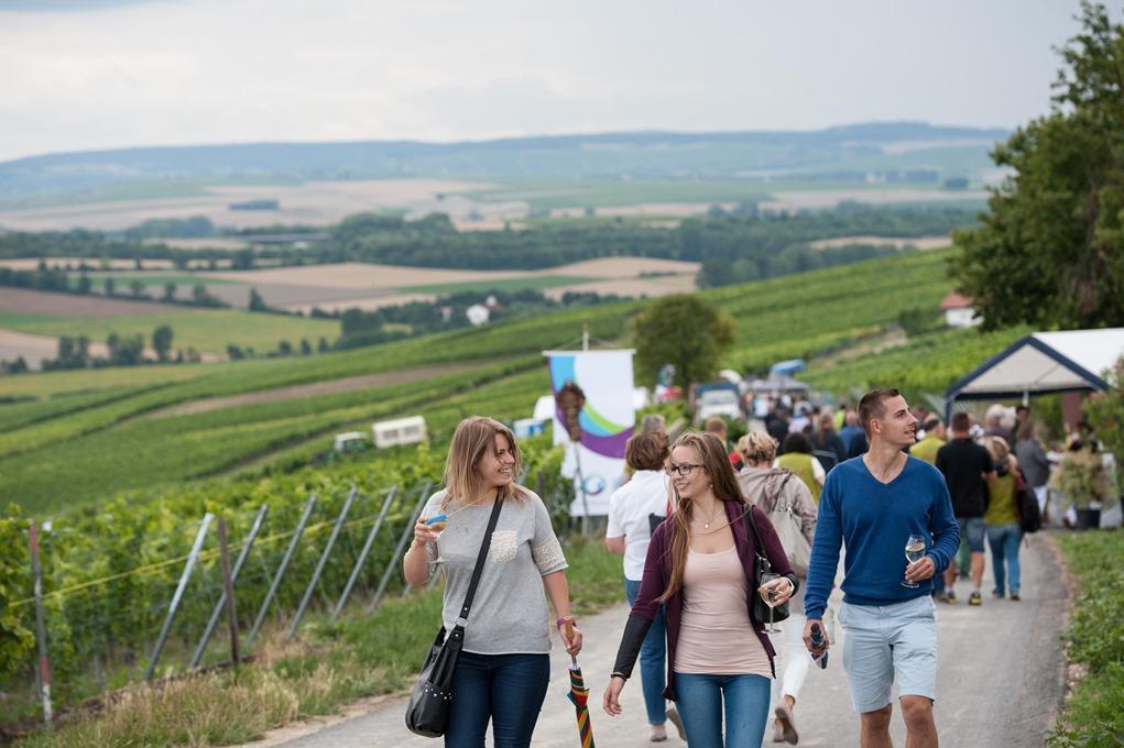 Wein erleben im Wißberg