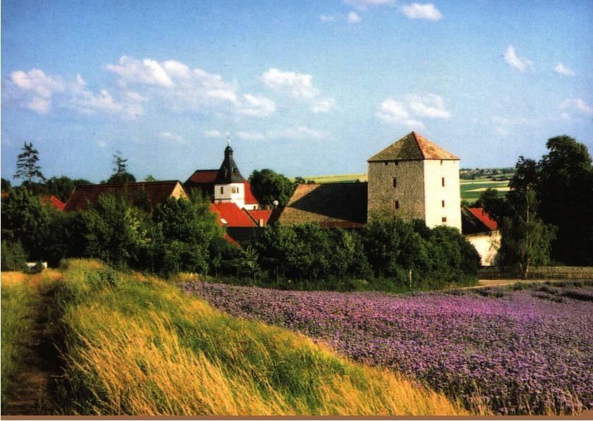 Eppelsheim - Die Effenkranzgemeinde