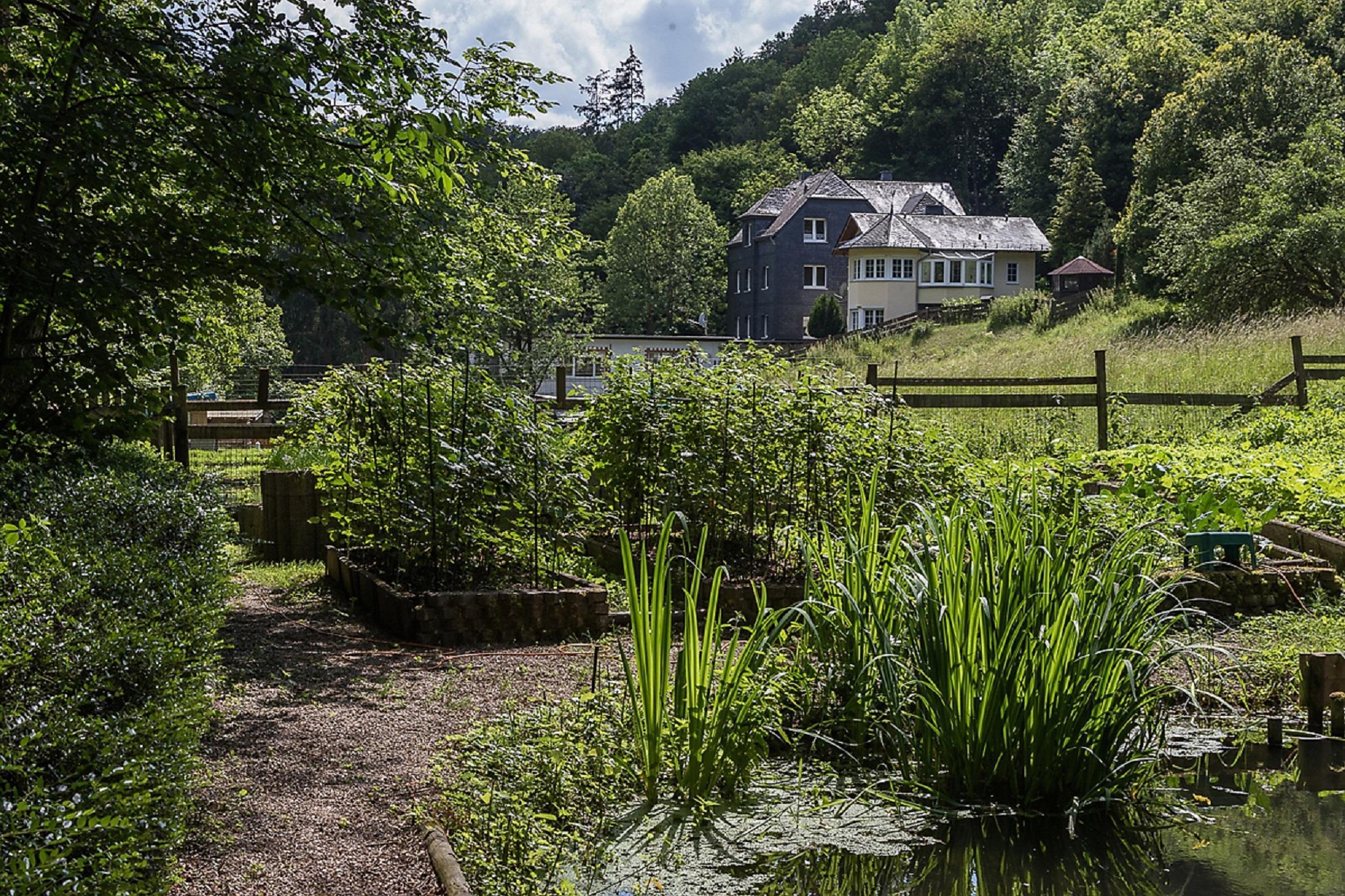 Mühlenansicht mit Bauerngarten