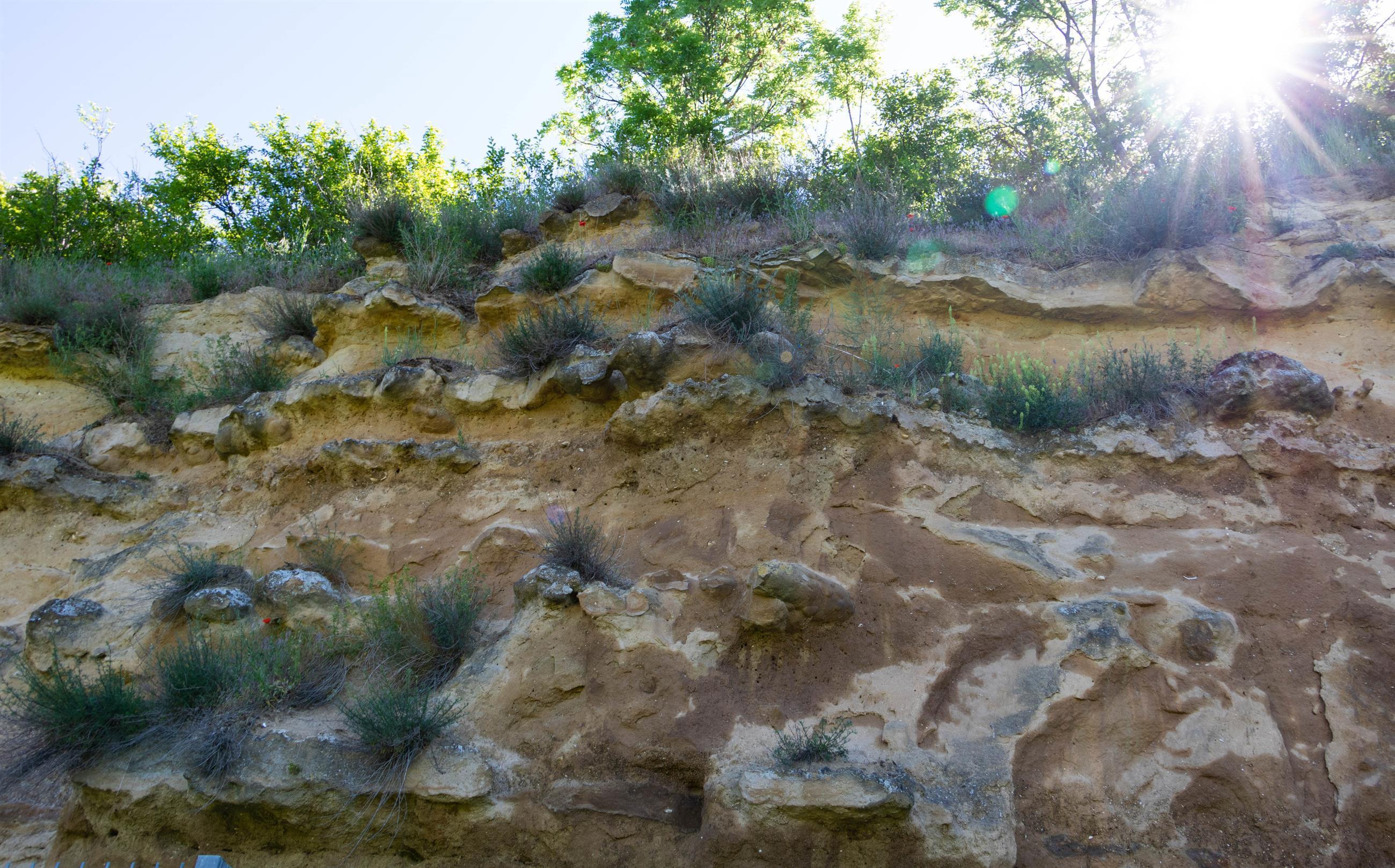 Geologie und Weinkirche