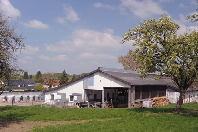 Ferienwohnung Bernis Ferienhaus Ferienwohnung Im Hanicht-7 Nächte (771736), Hersdorf, Südeifel, Rheinland-Pfalz, Deutschland, Bild 3