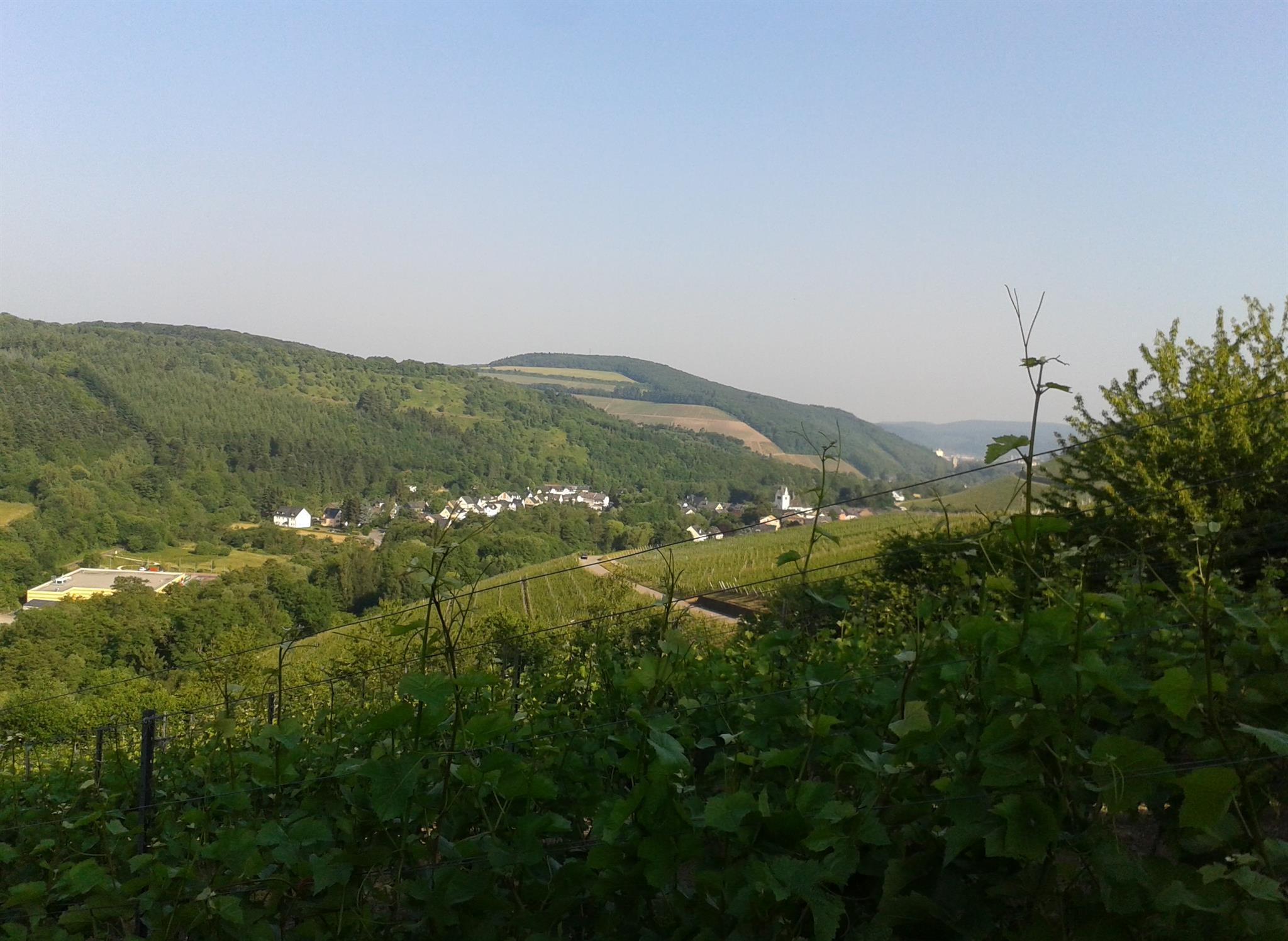 Blick nach Kasel Richtung Trier