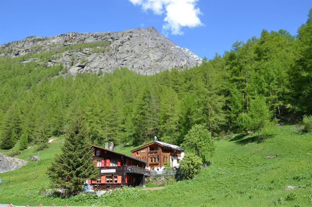 Ferienwohnung Wildi 4-Bettwohnung (794545), Saas Almagell, Saastal, Wallis, Schweiz, Bild 15