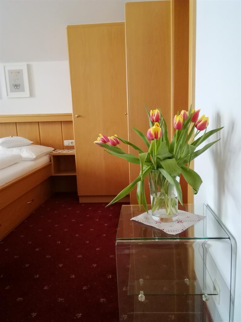 Appartement de vacances Bruckberg, Appartement Apartment/Wohn-Schlafraum/Dusche od. Bad,WC (1915606), Zell am See, Pinzgau, Salzbourg, Autriche, image 10