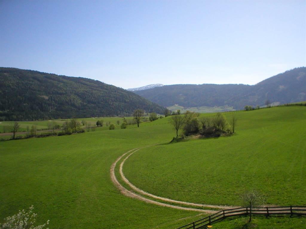 Ferienwohnung Lassacher, Restlhof Ferienwohnung Bergeblick (2071761), Mariapfarr, Lungau, Salzburg, Österreich, Bild 20