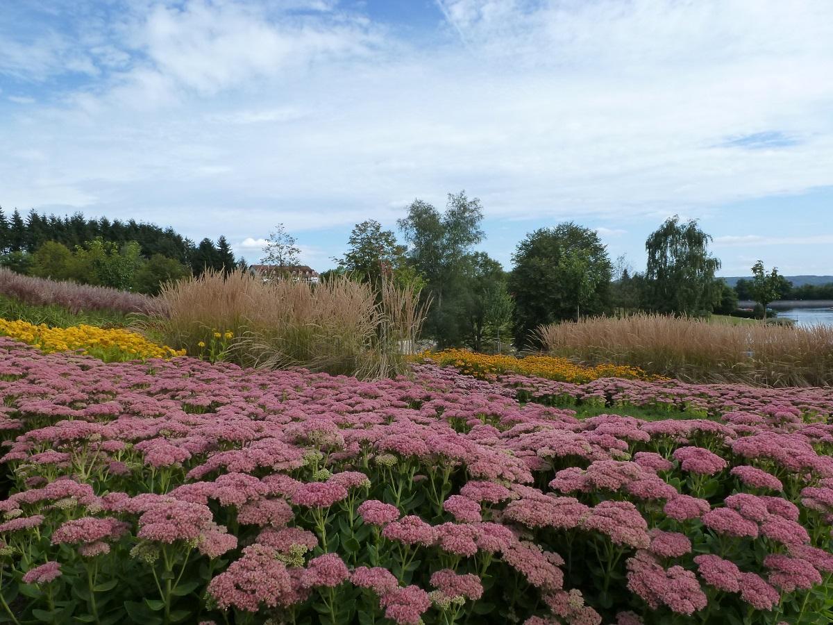 Garten Stausee