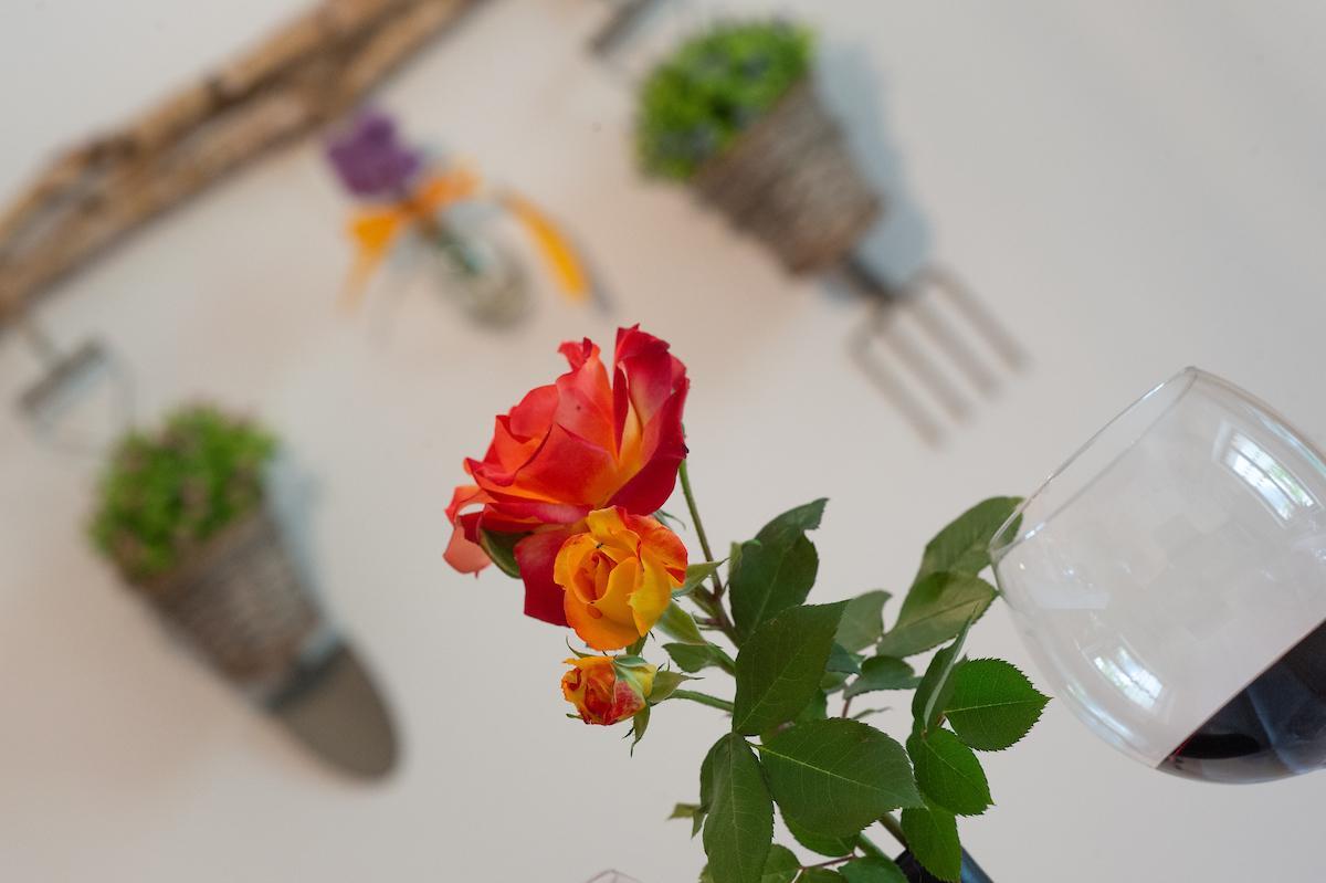 Rose Garden a Tezze © foto Daniele Mosna © foto Da