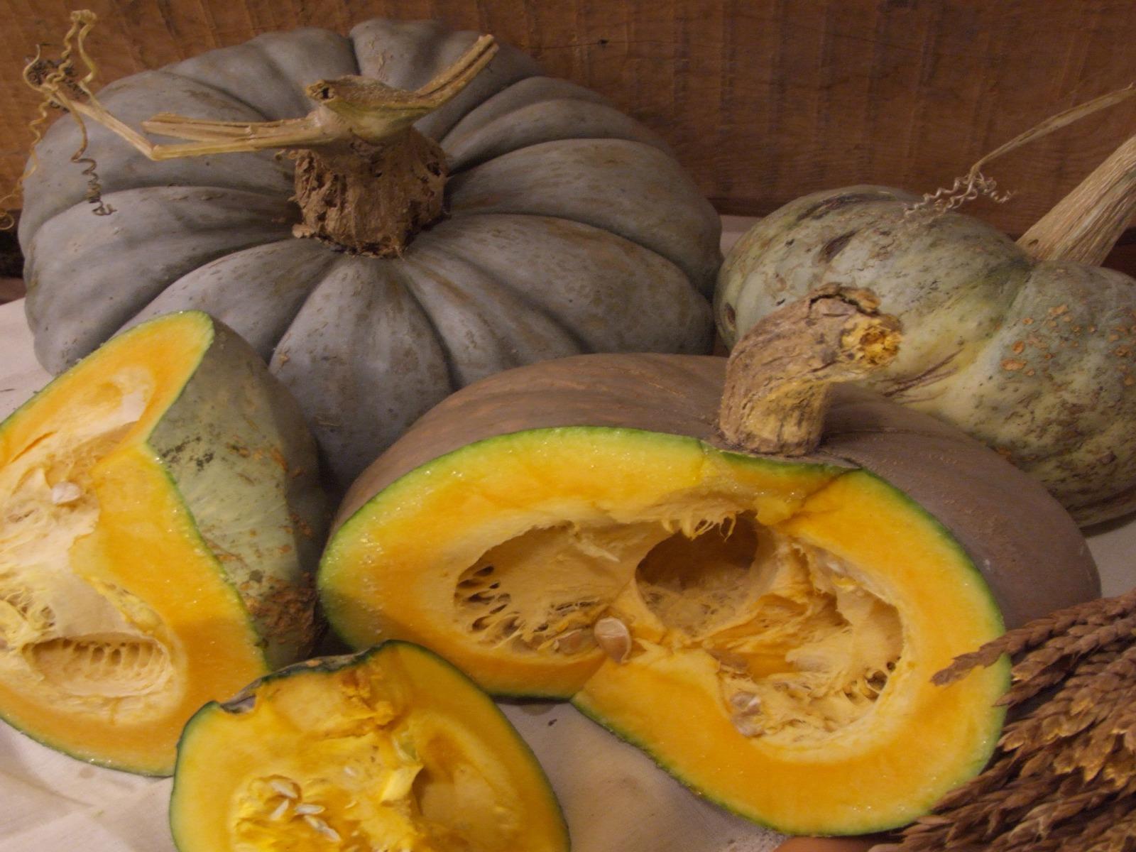 Mostra mercato della Zucca Santa Bellunese