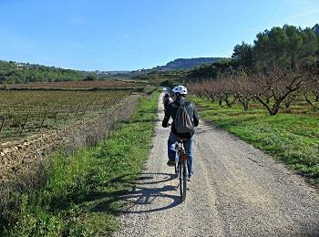 Esperienze alla scoperta del territorio - Bike tour tra i Colli Euganei