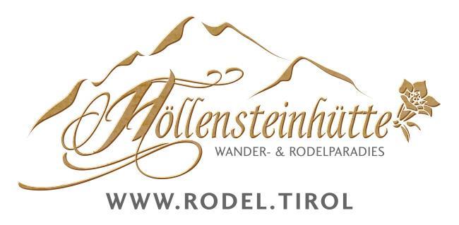 logo_hoellensteinhuette 1