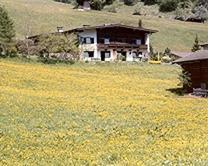 Haus Oblasser Sommer