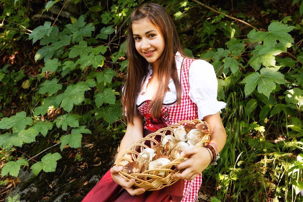 Pilze aus der Region